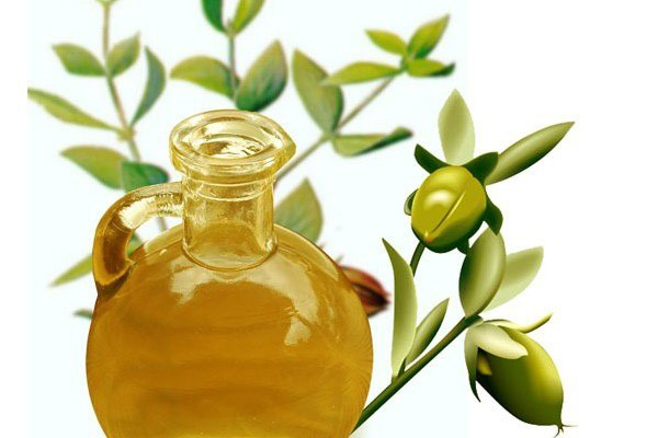 Jojoba oil – Properties and application.