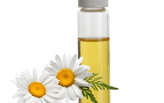 Chamomile – properties and use in cosmetology